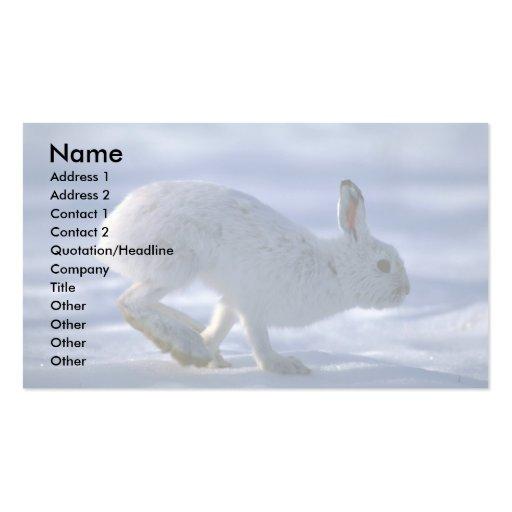 Lebre de variação/coelho de sapato de neve que fun cartões de visita
