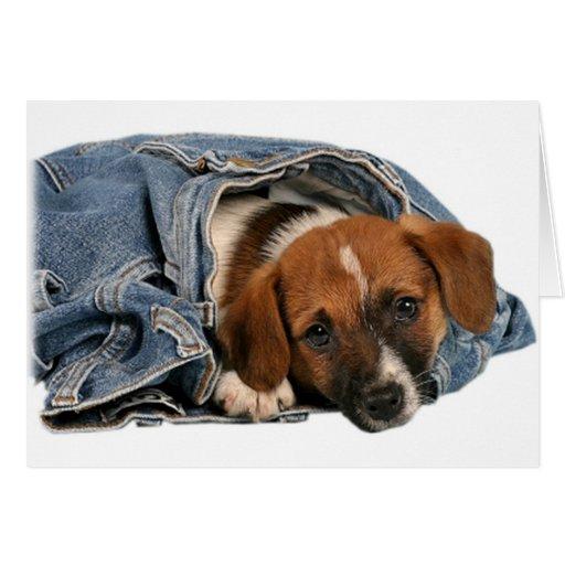 Lebreiro nos jeans cartao