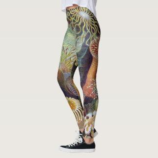Legging Anêmonas de mar subaquáticas do vintage por Ernst