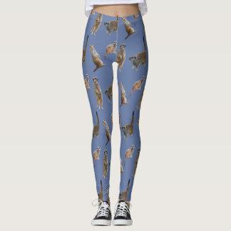 Legging Caneleiras da agitação de Meerkat (azuis)