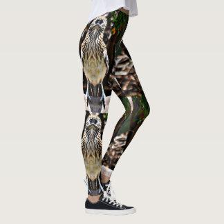 Legging Caneleiras do cuco terrestre australiano do