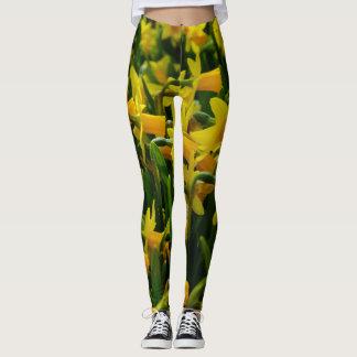 Legging Família do Daffodil