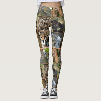 LEGGING GATOS GRANDES