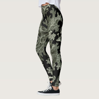 Legging Líquene por Ernst Haeckel, plantas da natureza do