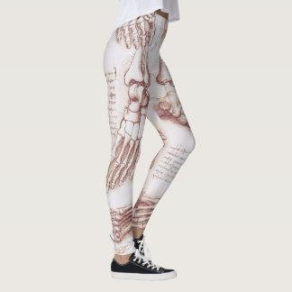 Legging Ossos de pé de esqueleto da anatomia humana por da