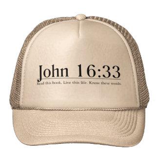 Leia o 16:33 de John da bíblia Bonés