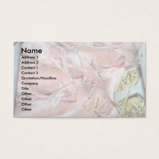 Leitão recém-nascidos cartão de visitas