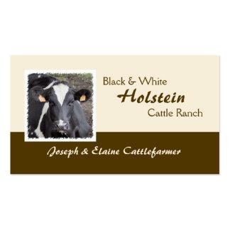 Leiteria de Holstein ou cartão de visita da carne