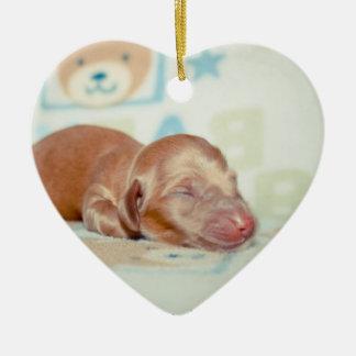 Lembrança Recém-nascida-Lovebugdoxies do filhote Ornamento De Cerâmica Coração