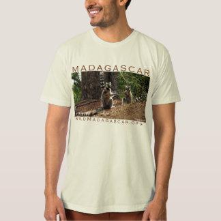 Lemurs do Ringtail em Madagascar Tshirt