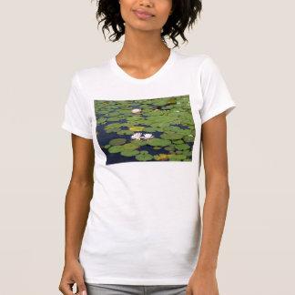 lenape do lago, água Gap de Delaware., Pa Tshirt