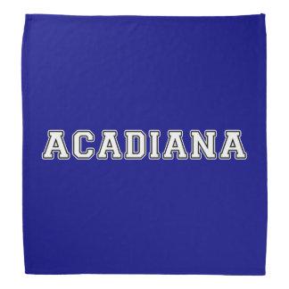 Lenço Acadiana