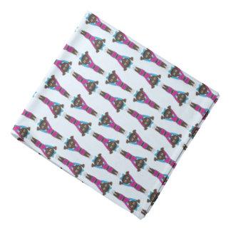 Lenço Dançarino de caída azul cor-de-rosa dos Acrobatics