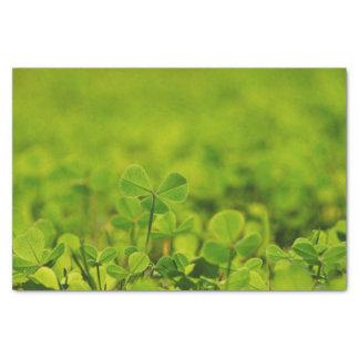 Lenço de papel com as folhas do trevo na grama