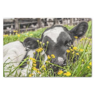 Lenço de papel com imagem da vitela nas flores