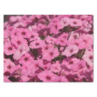 lenço de papel cor-de-rosa do amor perfeito