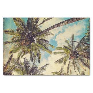Lenço de papel da palmeira dos Cocos de Kauai