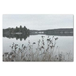 Lenço de papel de Michigan da paisagem do inverno
