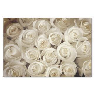 Lenço de papel dos rosas brancos da senhorita