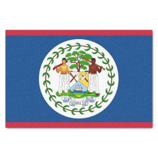 Lenço de papel patriótico com a bandeira de Belize
