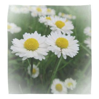 Lenço flor branca do primavera na grama verde