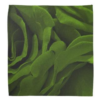 Lenço Foto aveludado da flor dos rosas da verde azeitona