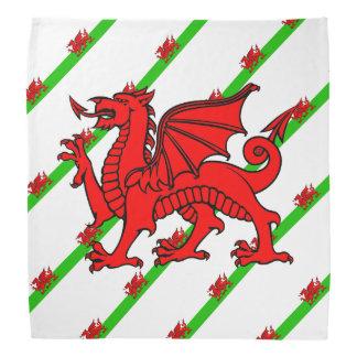 Lenço Galês listra a bandeira