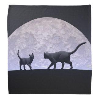 Lenço Gatos românticos