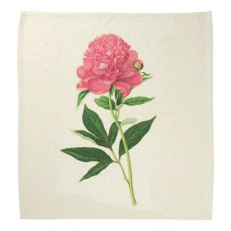 Lenço Impressão botânico do vintage, peônia cor-de-rosa