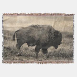 Lençol Búfalo americano - bisonte das planícies