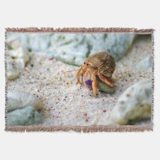 Lençol Caranguejo da areia, Curaçau, ilhas das Caraíbas,