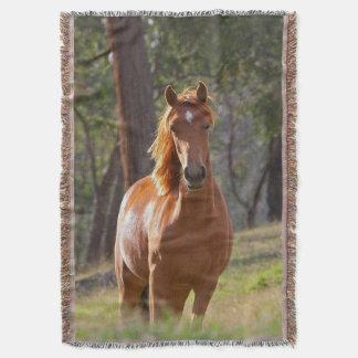 Lençol Cavalo nas madeiras