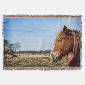 Lençol Cobertura belga do lance da cabeça de cavalo