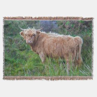 Lençol Cobertura nova do lance da vaca das montanhas