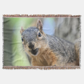 Lençol Ímã do esquilo