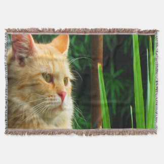 Lençol Meditação do gato de gato malhado do gengibre