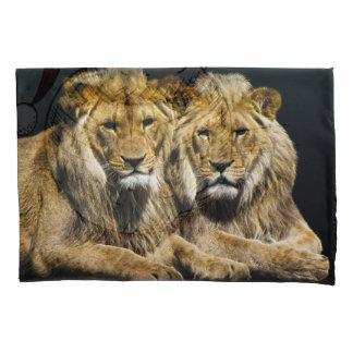 Leões predadores perigosos