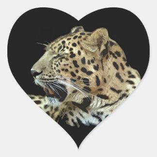 Leopardo Adesivo Coração