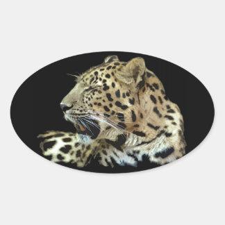 Leopardo Adesivos Em Formato Ovais