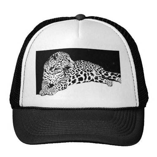 Leopardo Bonés