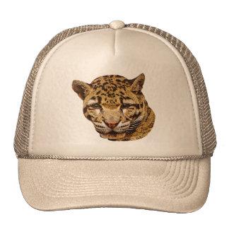 Leopardo nublado boné