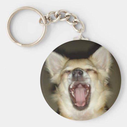 leve chaves chihuahua foto perso cão chaveiro