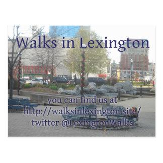 Lexington anda cartão