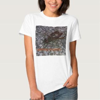 libélula do saddlebag t-shirt