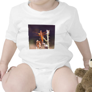 Libélula Macacãozinho Para Bebês