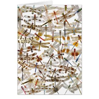 Libélulas abundante! Cartão