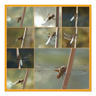 libélulas convite quadrado 13.35 x 13.35cm