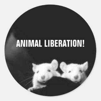 Libertação animal! adesivos redondos