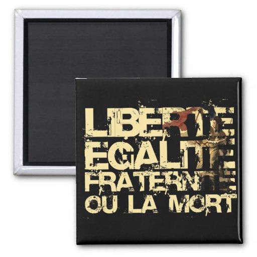 Liberte Egalite Fraternite: Revolução Francesa Imã De Geladeira