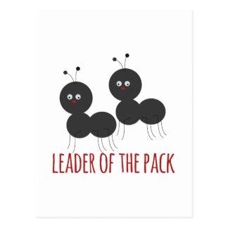 Líder do bloco cartão postal